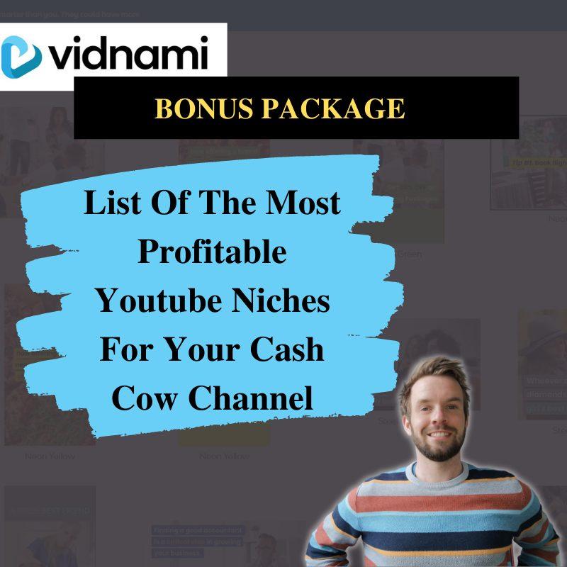 Vidnami Review Bonus #3